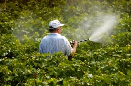 لزوم اتخاذ شیوه های دوست دار محیط زیست در کنترل جمعیت آفات گیاهی