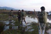هفت هزار متر از اراضی ملی حاشیه تالاب جوکندان تالش رفع تصرف شد